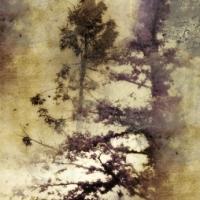 Rick Filler - Silence Calling 1/15