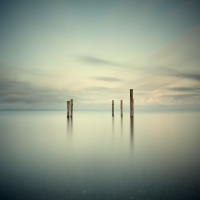 David Ellingsen - Salish Sea, Study 2 #55