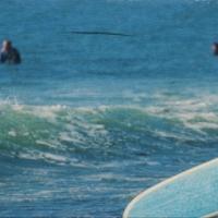 Patrick Lajoie - Aqua Board