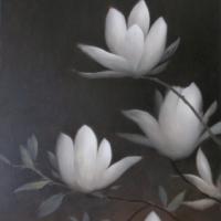 Greg Nordoff - Magnolias 3