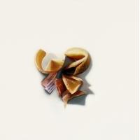 Erin Rothstein - Tasting Room - Fortune Cookies