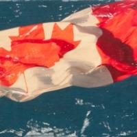 Patrick Lajoie - O Canada