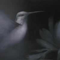 Greg Nordoff - Hummingbird in Black