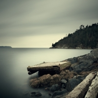 David Ellingsen - Salish Sea, Study 2 #39 1/10