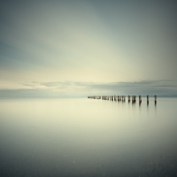David Ellingsen - Salish Sea, Study 2 #66 1/10