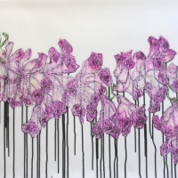 Francisco Gomez - Orchid Series