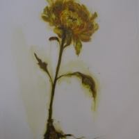 Madeleine Lamont - Mylar Flower Series Yellow 2