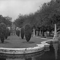 Paul Till - Vizcaya Gardens - Pond 1/5