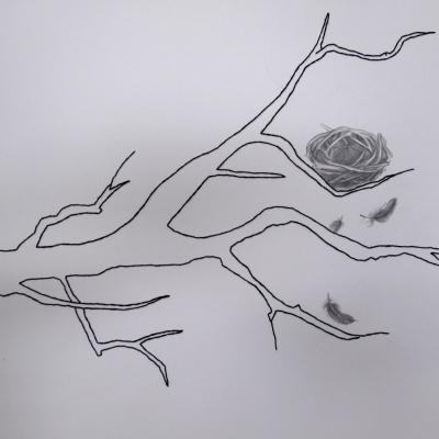 Diliana Popova - Empty Nest
