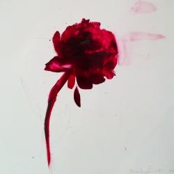 Madeleine Lamont - Velvet Paper Peonies