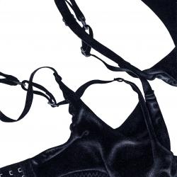 Dara Vandor - Garter Menagerie I