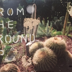 Talia Shipman - From The Ground Up