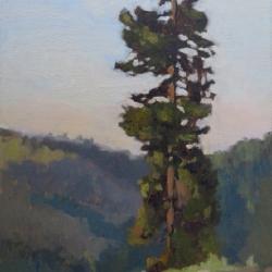 Maria  Josenhans - Tree Over Annie's Creek