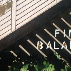 Talia Shipman - A Fine Balance