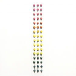 Erin Rothstein - Tasting Room - Candy Buttons