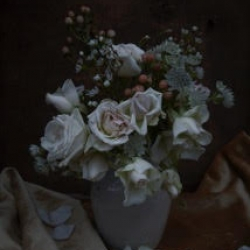 Kristin  Sjaarda - White Roses