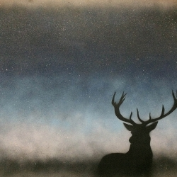 Ian Busher  - Stag at Dusk