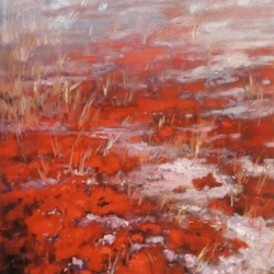 Elzbieta Krawecka - Momentary Stillness