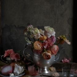 Kristin  Sjaarda - Ranunculus (Silver Teapot)
