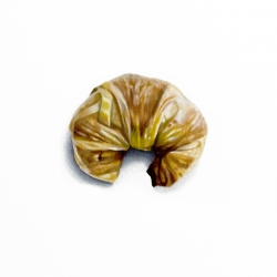Erin Rothstein - Tasting Room - Croissant