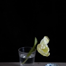 Kristin  Sjaarda - Water Glass 1