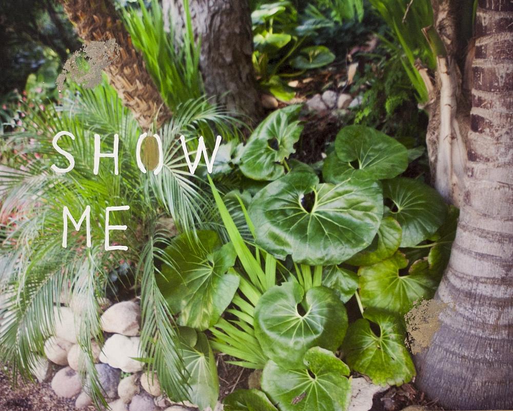 Show Me  by Talia Shipman
