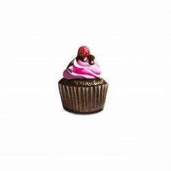 Erin Rothstein - Tasting Room - Raspberry Cupcake