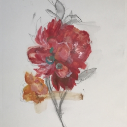 Madeleine Lamont - Coral Floral 2016