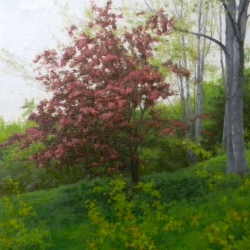 Andy  MacLean  - Spring Landscape