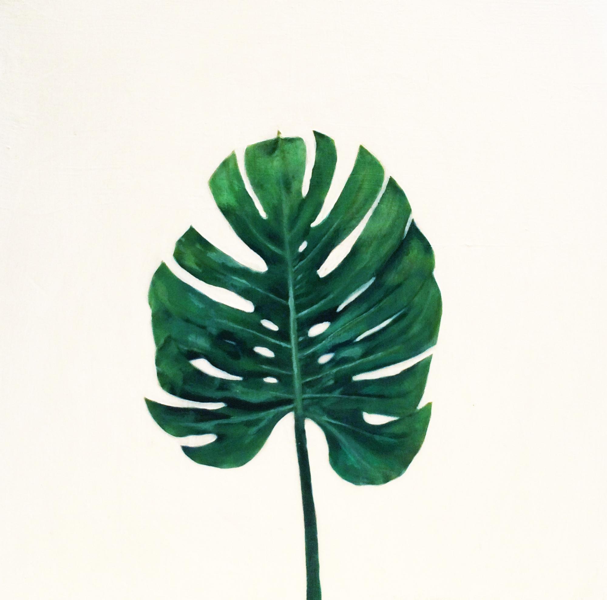 Plant 1  by EM Vincent