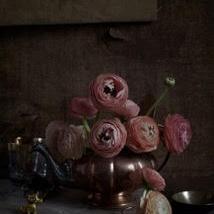 Kristin  Sjaarda - Ranunculus