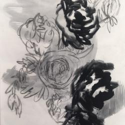 Rundi Phelan - Clouded Thinking