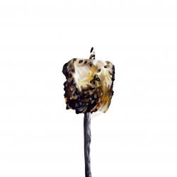 Erin Rothstein - Tasting Room - Marshmallow