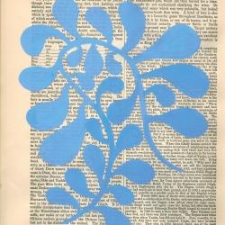 Michela Sorrentino - Blue Gilgit