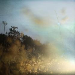 Charlene Serdan - New Beginnings Happen Each Day