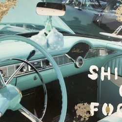 Talia Shipman - Shift of Focus