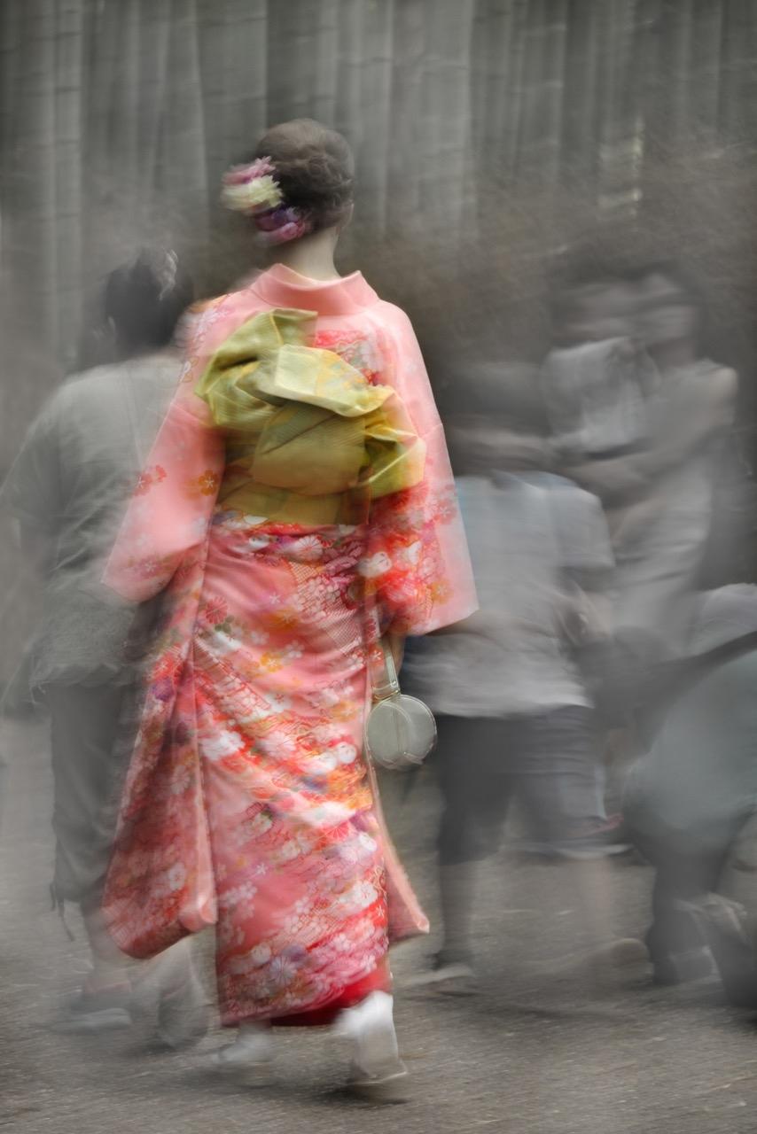 Arashiyama 3 A/P by Robert Berlin
