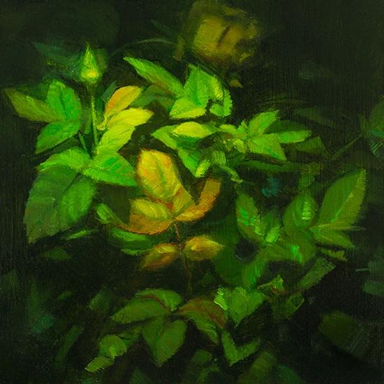 Little Leaves  by Caroline Ji