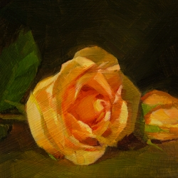 Caroline Ji - Two Roses in Orange