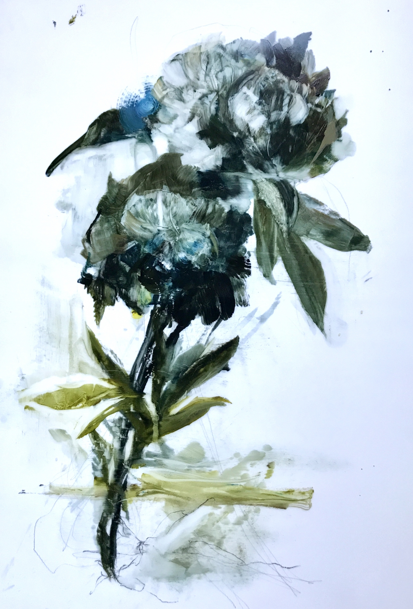 Blue Peony 2018  by Madeleine Lamont
