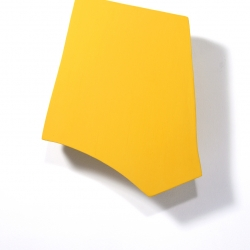 Erin  Vincent - Yellow Form