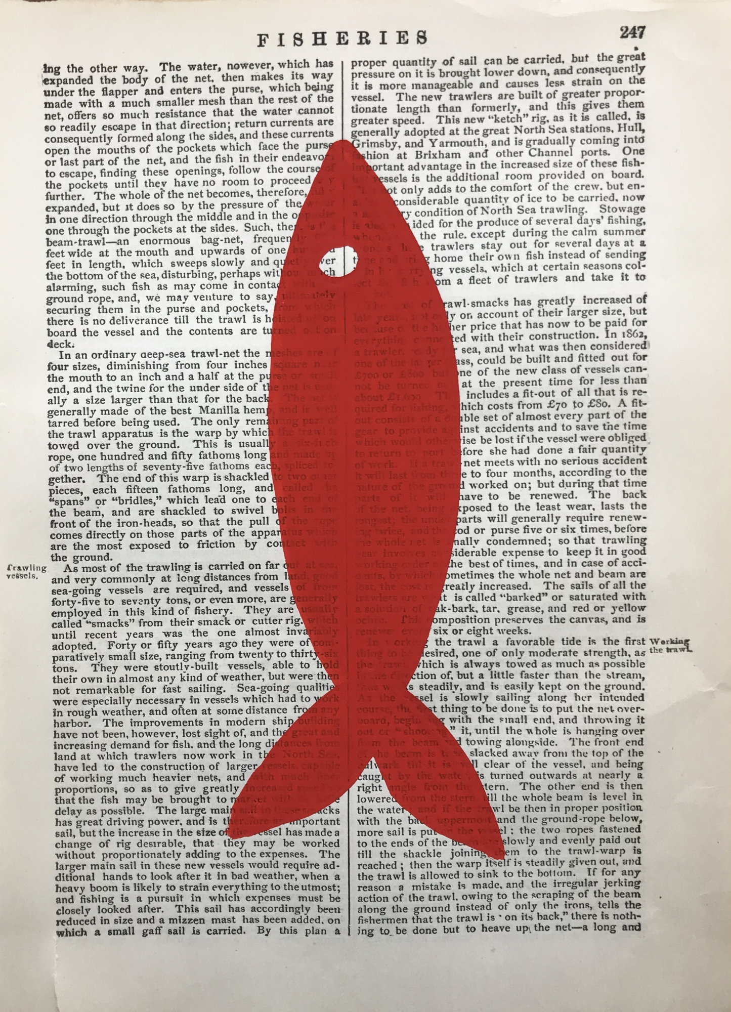 Fisheries red 247  by Michela Sorrentino