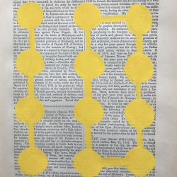 Michela Sorrentino - Fol Fol yellow 351