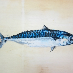 Agnieszka Foltyn - Tropische Fische 4