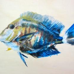 Agnieszka Foltyn - Tropische Fische 5