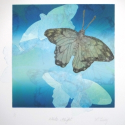 Lorna Livey - White Flight