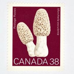 Peter Andrew - Canada 38 Mushroom Stamp (Red)