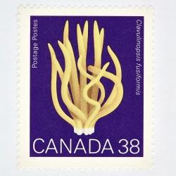 Peter Andrew - Canada 38 Mushroom Stamp (Purple)