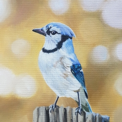 Emily Bickell - Blue Jay 2