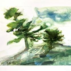 Madeleine Lamont - Lake of the Woods 4